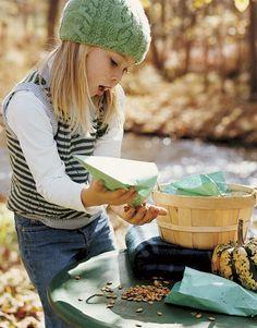 How to roast pumpkin seeds. #cooking #tips