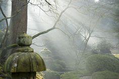 Japanese Garden, Tatton Park, Cheshire      amazing!