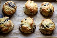 Caramelized Mushroom and Onion Scones