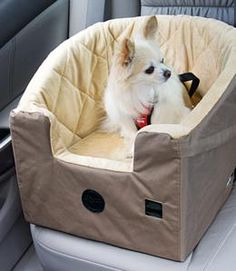 Bucket Booster Dog Car Seat nerd this for sage so she doesn't try to lay on me while I drive