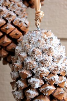 """Easy to create a """"frosty"""" effect on pine cones using white glue and epsom salt -Clever Nest"""