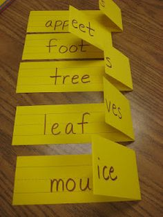 simple and cheap way to practice plural nouns.  Fold down flap to make plural word.