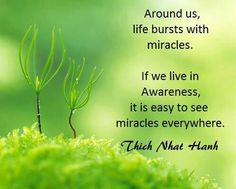 """a biography of the life and achievements of thich naht hahn Thich nhat hanh shows us how eating mindfully can nourish more than just your body  our life takes on a much deeper quality,"""" hanh writes  here is how hahn ."""