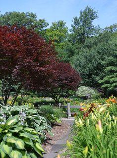 Informal planting designs on pinterest garden photos for Landscaping rocks buffalo ny