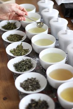 tea tasting (varieties of white, green and oolong tea)