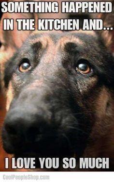 Twitter / CoolPeopleShop: German Shepherd ...