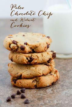 Paleo Chocolate Chip and Walnut Cookies:: Paleo Spirit