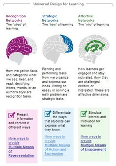 Writing an essay involves brain's strategic networks that differentiate the ways students expressing themselves.