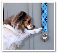 Doggie Days On Pinterest Whelping Box Dog Kennels And Dog Houses