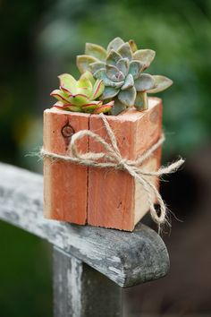 diy succulent wood pots for the home, office or living room