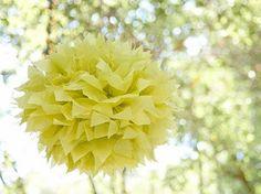 sunshine yellow lemonaid party