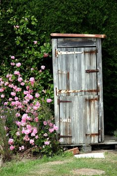 Want to build an outhouse garden shed