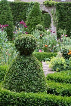 topiary in garden.