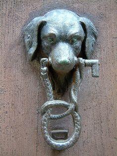 Bull dog door knocker black country metalworks ltd must haves pinterest door knockers - Bulldog door knocker ...