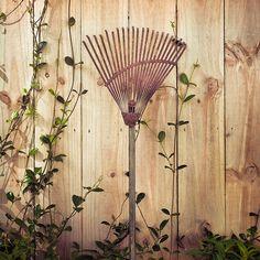 Vintage Garden #vintage #garden