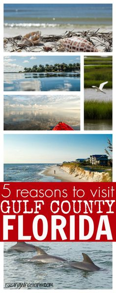 5 reasons for your family to visit Gulf County Florida   list of best family activities and adventures to discover in this Florida vacation spot gulfcountyfl #GCFLnofilter #ad