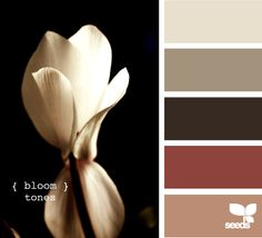 potential color palette for a palet wall. :-)