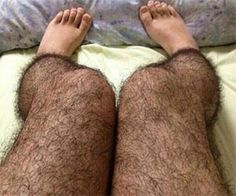 "Hairy Leg Stockings- this is so horrible! LOL.. the ad says ""discourage any potential creeper..."" Yep!"