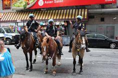 High Horse Heroes!!