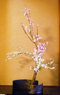 ✿ ❤ Ikebana...
