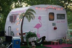 LOVE!  Flamingo Camper!