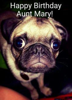 Favorite Pugs On Pinterest Loki Baby Loki And Aunt