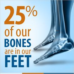 Schedule regular checkups with your podiatrist to keep your feet in good health. From your heels to your toes, your feet can affect your legs and back. Learn more about foot health and find out how cushioned, supportive shoes can help.