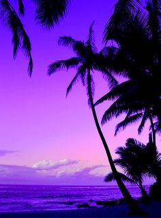 A beautiful violet, lavender sunset.