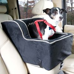 Luxury High-Back Console Pet Car Seat at Brookstone—Buy Now!