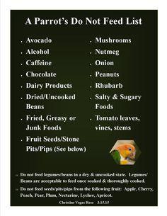 Cockatoo Food List