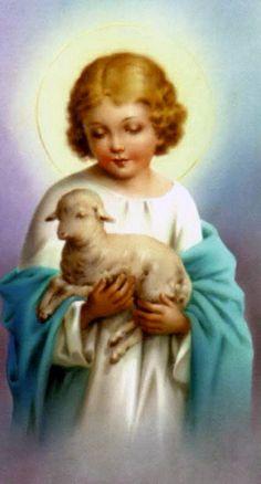Lamb of God  ❤️