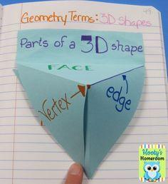 3D shapes foldable: use for masculine, feminine, & gender neutral adjectives