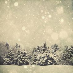 Winter Art Snow Globe 8x8 Fine Art Photography by MarianneLoMonaco, $25.00