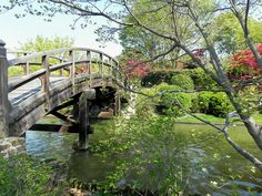 #Seiwa-en meaning the garden of pure, clear harmony and peace.