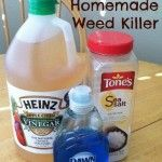 how to make weed killer drink