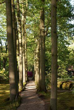 pathway to zen