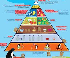 Prezi Over De Actieve Voedingsdriehoek