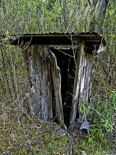 Outhouse behind the Smith House near LaCrosse, Florida.