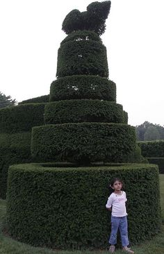 Topiary in Longwood Gardens