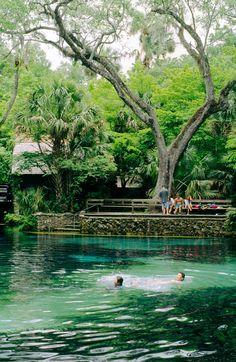 Juniper Springs, Ocala, Florida #travel #vacation