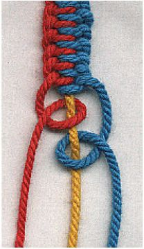 The knot(s) pictured is used to created survival cord bracelets/belts that unfurl in seconds flat - just pull out the middle cord.