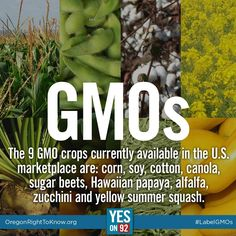 Be aware that corn, soy, and canola oils are very prevalent in Big Food.  Also, only C & H sugar is not made with sugar beets, to my knowledge.