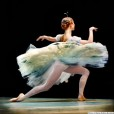 Ballet: The Best Photographs