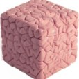 Your Brain Cubed