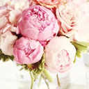 Peonies, pearls and promises