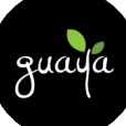 guaya.wordpress.com