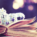 The Books That Bind Us