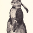 The Noble Hare