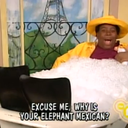 Mexican Elephant®