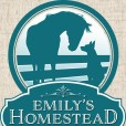 Emily's Homestead